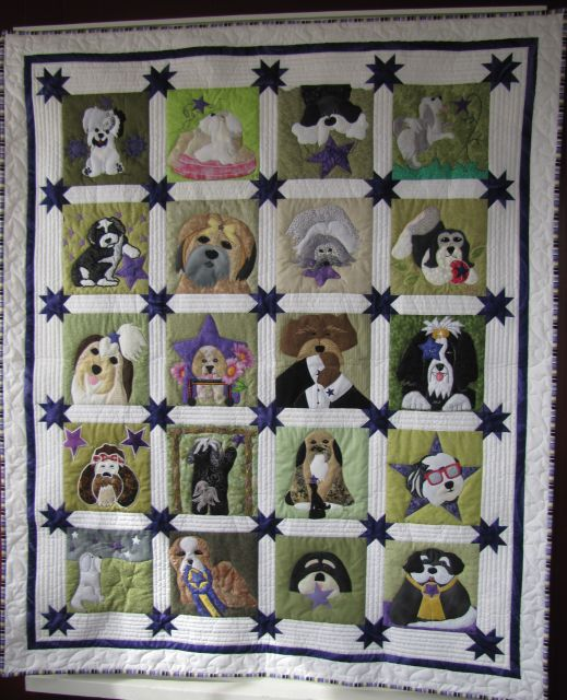 Star of the Show Quilt
