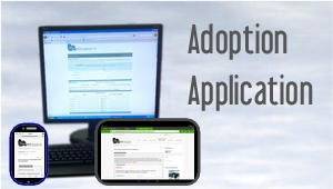 Adoption Application